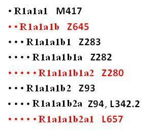 arya-subclades-1_04