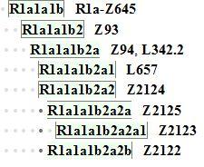 arya-subclades-3_08